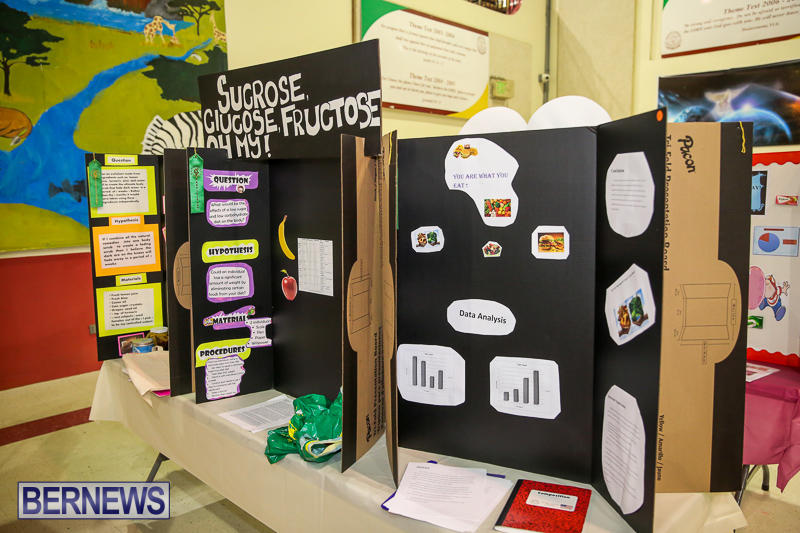 Bermuda-Institute-Science-Fair-April-5-2017-59