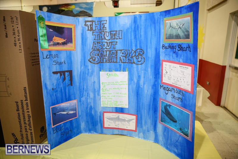 Bermuda-Institute-Science-Fair-April-5-2017-73
