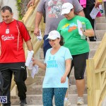 Bermuda National Trust Palm Sunday Walk, April 9 2017-99