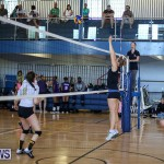 Bermuda Open Volleyball Tournament, April 29 2017-106