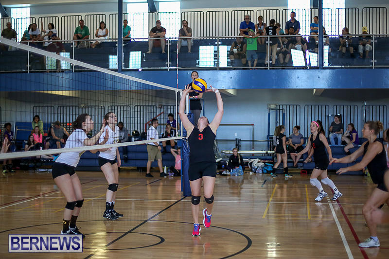 Bermuda-Open-Volleyball-Tournament-April-29-2017-109