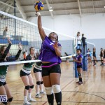 Bermuda Open Volleyball Tournament, April 29 2017-11