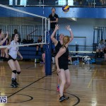 Bermuda Open Volleyball Tournament, April 29 2017-117