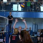 Bermuda Open Volleyball Tournament, April 29 2017-122