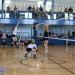 Bermuda Open Volleyball Tournament, April 29 2017-133
