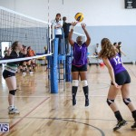 Bermuda Open Volleyball Tournament, April 29 2017-16
