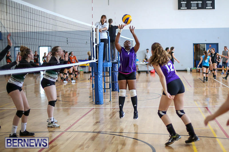 Bermuda-Open-Volleyball-Tournament-April-29-2017-16