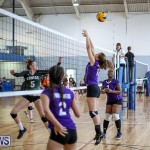 Bermuda Open Volleyball Tournament, April 29 2017-17