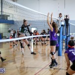 Bermuda Open Volleyball Tournament, April 29 2017-18