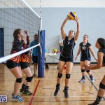 Bermuda Open Volleyball Tournament, April 29 2017-25