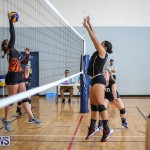 Bermuda Open Volleyball Tournament, April 29 2017-29