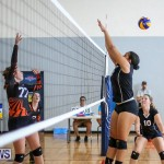 Bermuda Open Volleyball Tournament, April 29 2017-30