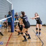 Bermuda Open Volleyball Tournament, April 29 2017-33