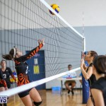 Bermuda Open Volleyball Tournament, April 29 2017-34