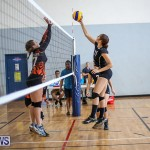 Bermuda Open Volleyball Tournament, April 29 2017-37