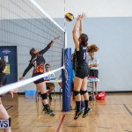 Bermuda Open Volleyball Tournament, April 29 2017-39