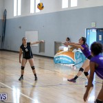 Bermuda Open Volleyball Tournament, April 29 2017-4