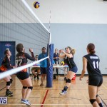 Bermuda Open Volleyball Tournament, April 29 2017-44