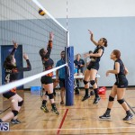 Bermuda Open Volleyball Tournament, April 29 2017-52
