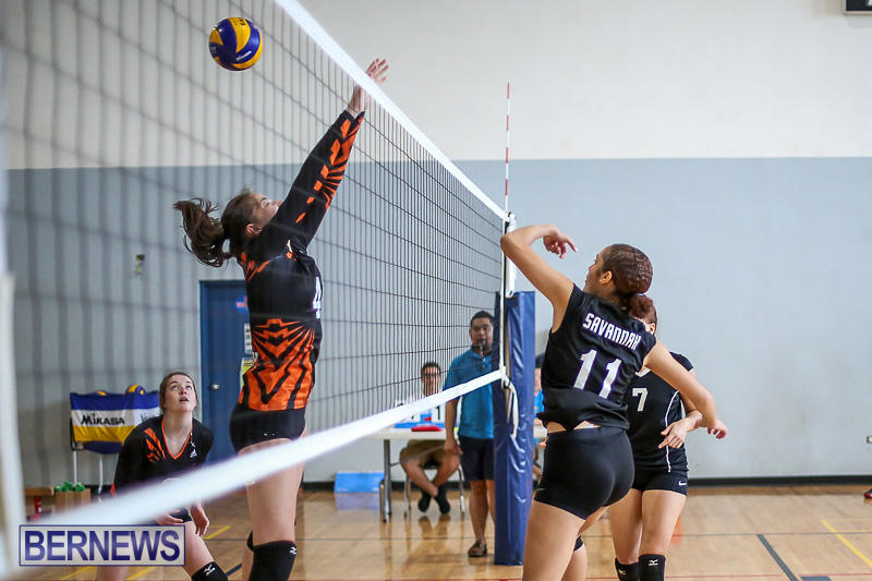 Bermuda-Open-Volleyball-Tournament-April-29-2017-55