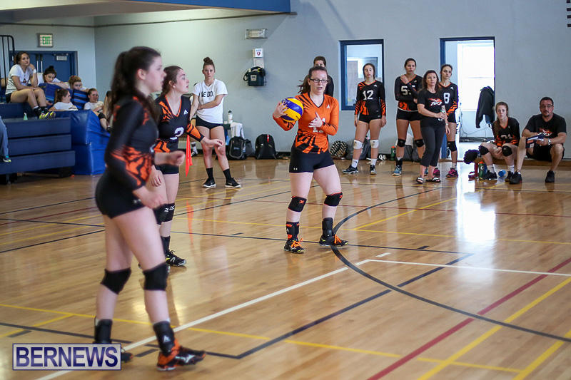 Bermuda-Open-Volleyball-Tournament-April-29-2017-57
