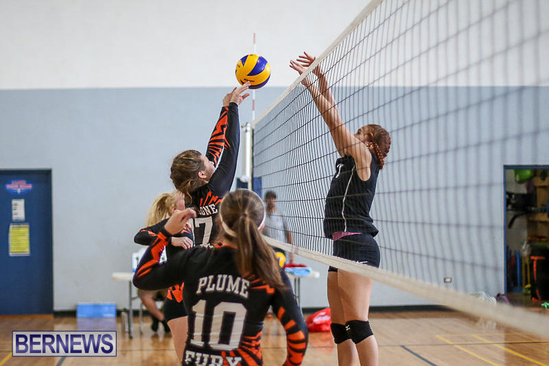 Bermuda-Open-Volleyball-Tournament-April-29-2017-59