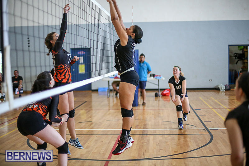 Bermuda-Open-Volleyball-Tournament-April-29-2017-68