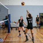 Bermuda Open Volleyball Tournament, April 29 2017-70