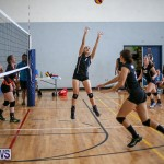 Bermuda Open Volleyball Tournament, April 29 2017-72