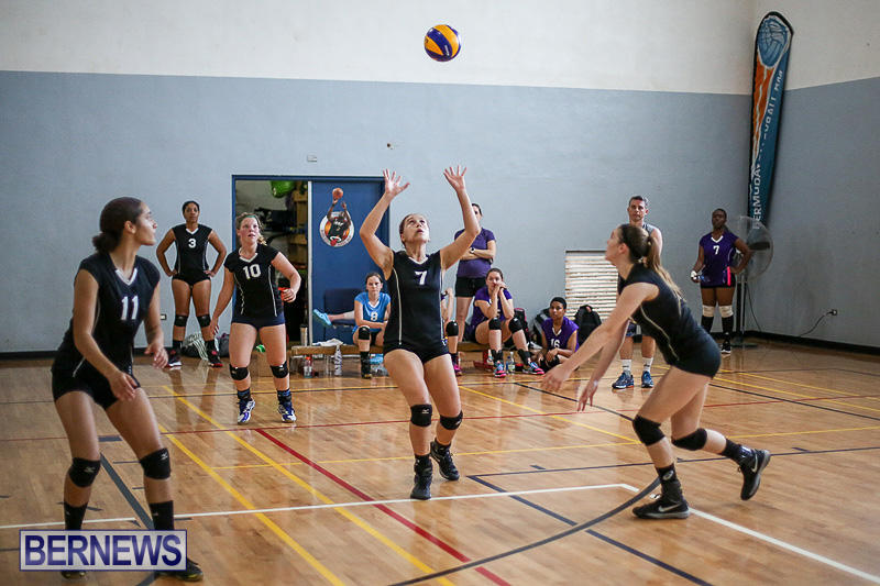 Bermuda-Open-Volleyball-Tournament-April-29-2017-76