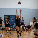 Bermuda Open Volleyball Tournament, April 29 2017-77