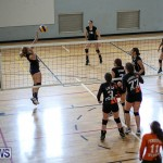 Bermuda Open Volleyball Tournament, April 29 2017-81