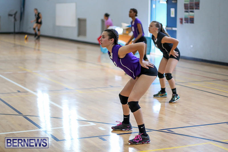 Bermuda-Open-Volleyball-Tournament-April-29-2017-9