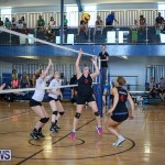 Bermuda Open Volleyball Tournament, April 29 2017-99