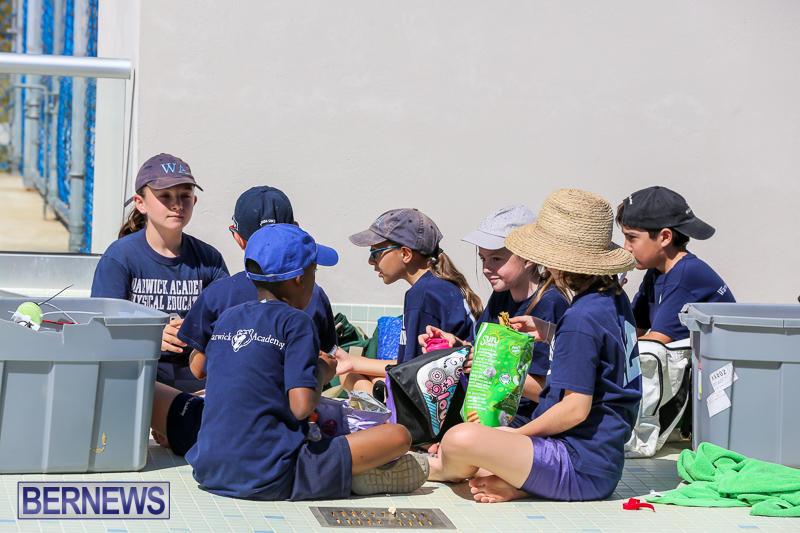 Bermuda-Regional-ROV-Challenge-April-22-2017-36