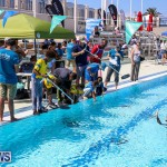 Bermuda Regional ROV Challenge, April 22 2017-67
