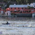 Digicel TriFest ITU Continental Cup Bermuda, April 9 2017-1