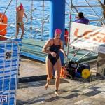 Digicel TriFest ITU Continental Cup Bermuda, April 9 2017-13