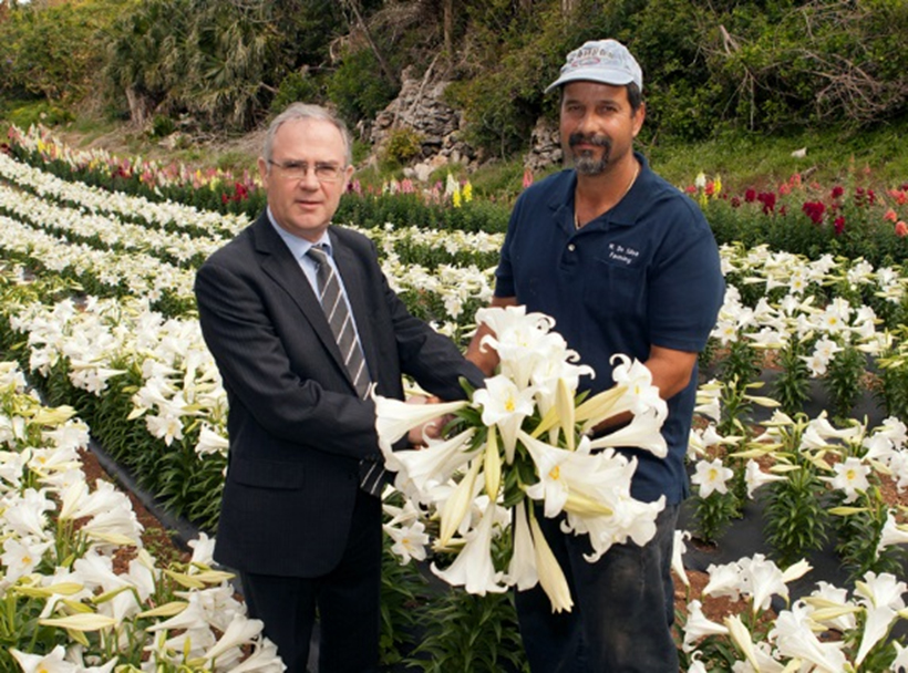 Governor Easter Lilies Bermuda April 11 2017