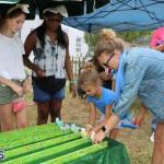 Spring Jamboree Bermuda April 29 2017 (32)