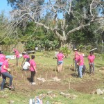 TMR Day of Giving Bermuda April 19 2017 (12)
