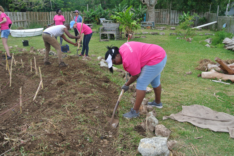 TMR-Day-of-Giving-Bermuda-April-19-2017-26