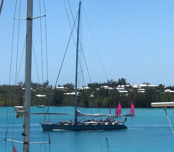 Antigua Bermuda Race Day 6 May 2017 (3)