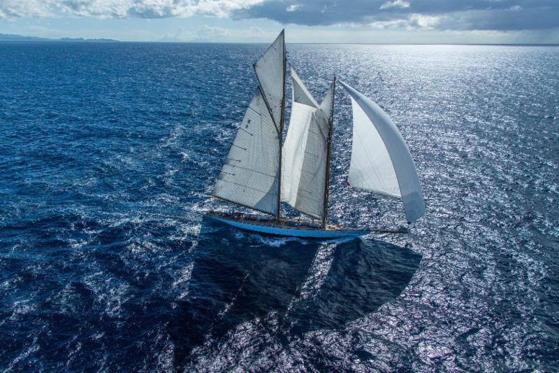 Antigua Bermuda Race May 2017 (2)