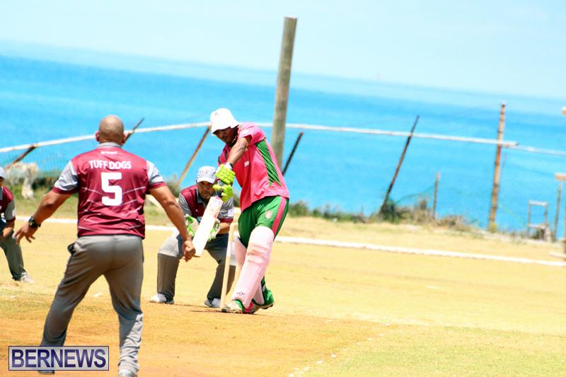 BCB-Twenty20-Cricket-Bermuda-May-21-2017-11