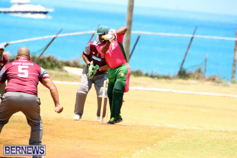 BCB-Twenty20-Cricket-Bermuda-May-21-2017-12