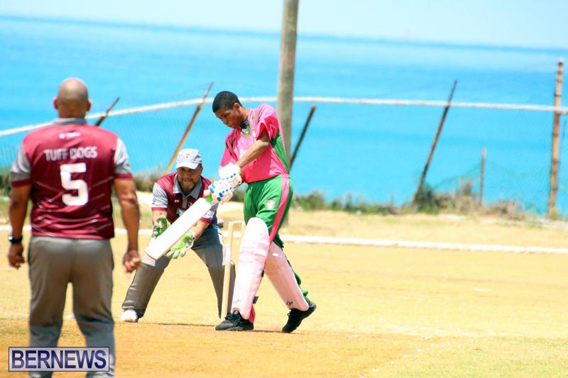 BCB-Twenty20-Cricket-Bermuda-May-21-2017-18