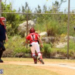 Baseball Bermuda May 10 2017 (11)