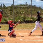 Baseball Bermuda, May 13 2017-10