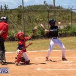 Baseball Bermuda, May 13 2017-3